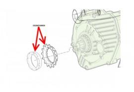 Cannondale Pignon moteur Bosch Moterra